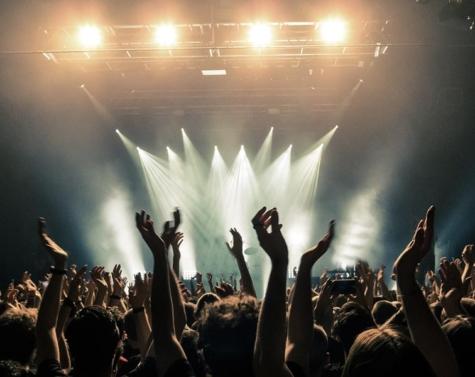 Disse 5 koncerter skal du bare se i 2019